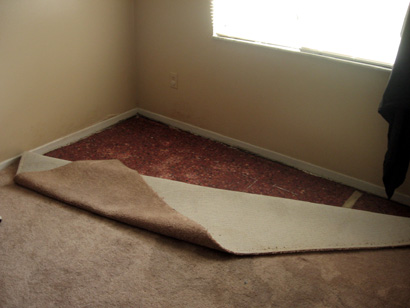 carpet_water_damage