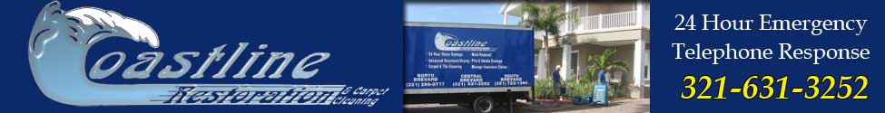 Emergency water removal and mold repair Brevard, FL